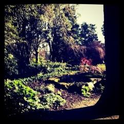 York House Gardens