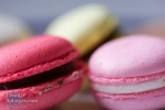 macro shot of coloured macaroons