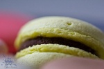 macro shot of a yellow macaroon