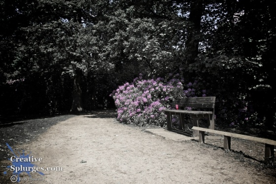 a bench in front of some partially desaturated flowers