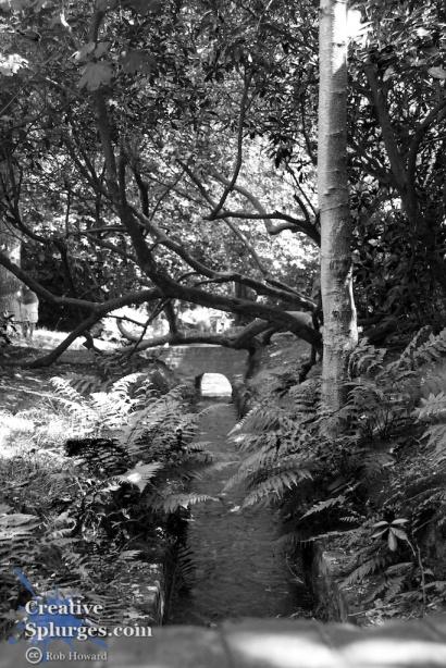 shot of a stream leading under a bridge