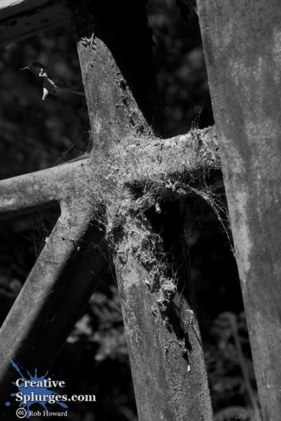 black and white shot of a spiderwebbed gate