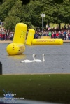 The swimming portion complete, the birdlife of Hyde Park reclaim their territory.