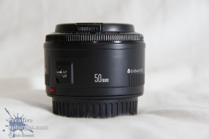 Nifty Fifty