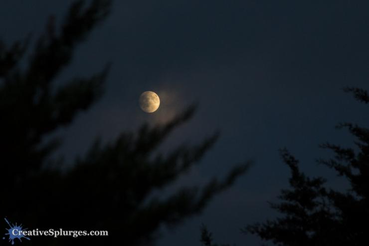 The Moon, seen from the Massif de l'Esterel, France