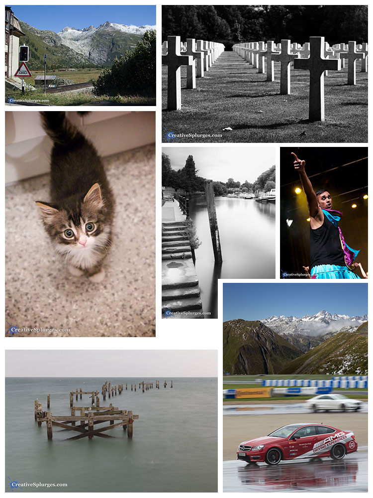2014 in Pictures